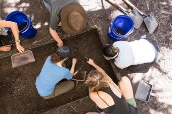 A professor and students excavate a dig site near Rollins' campus.
