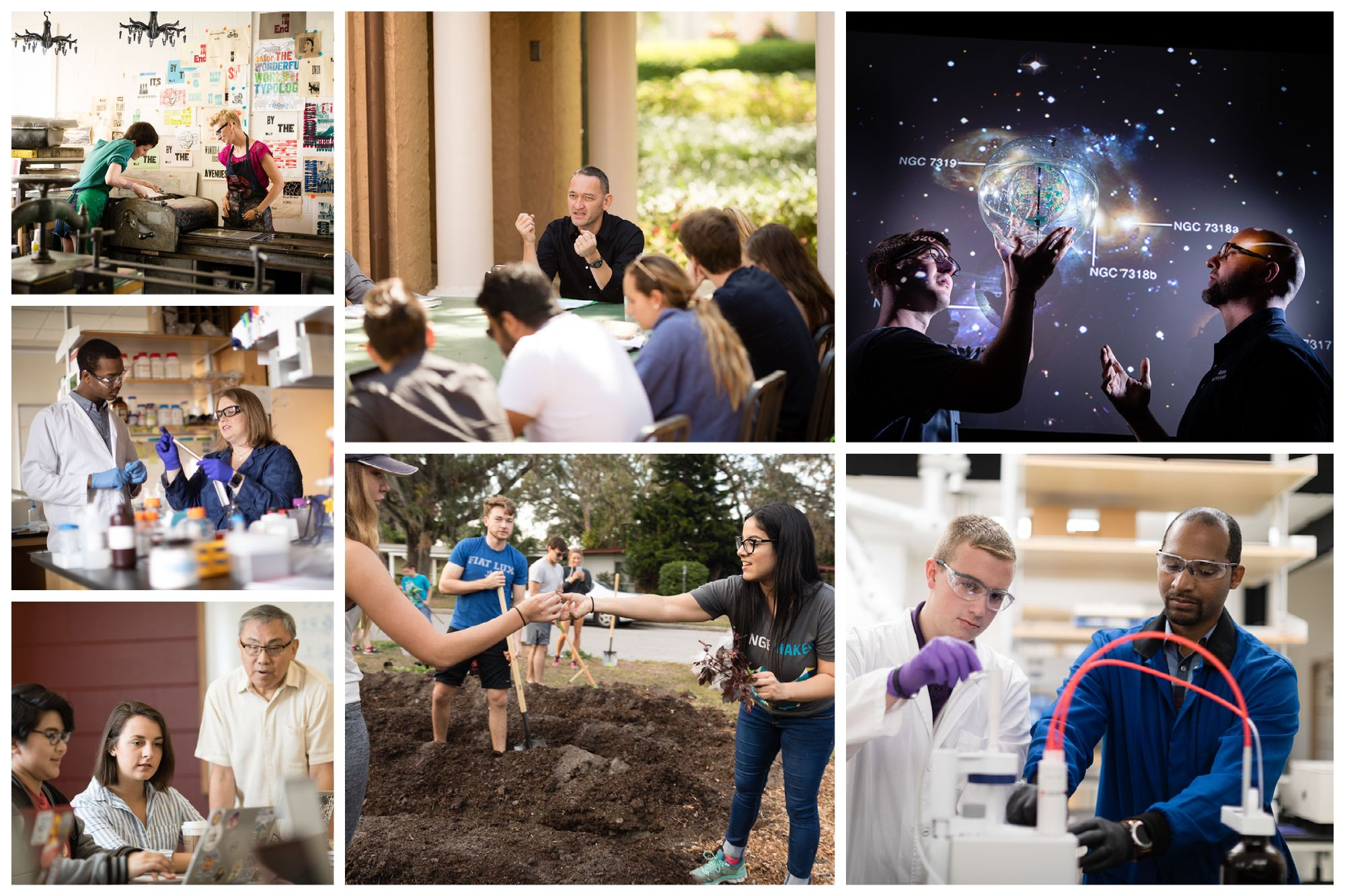 A collection of faculty mentors in everything from physics and political science to art and social entrepreneurship..