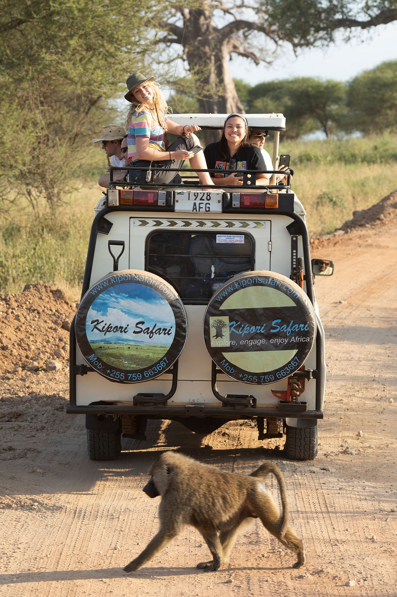 College students riding in the back of a truck during a safari while studying abroad.