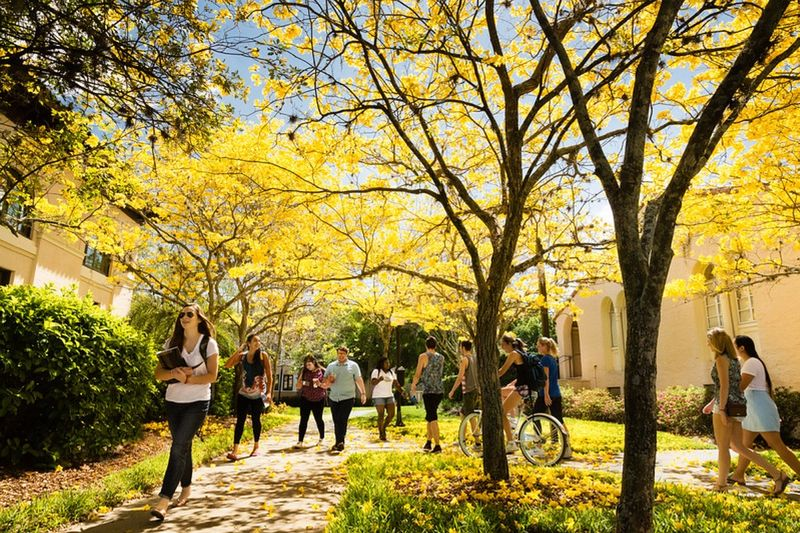 Rollins students walking to class.