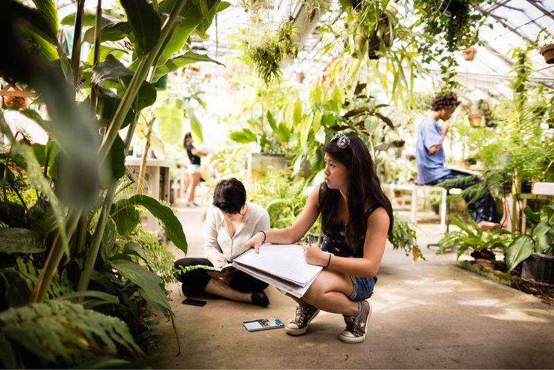 A student draws a still life in the Rollins greenhouse.