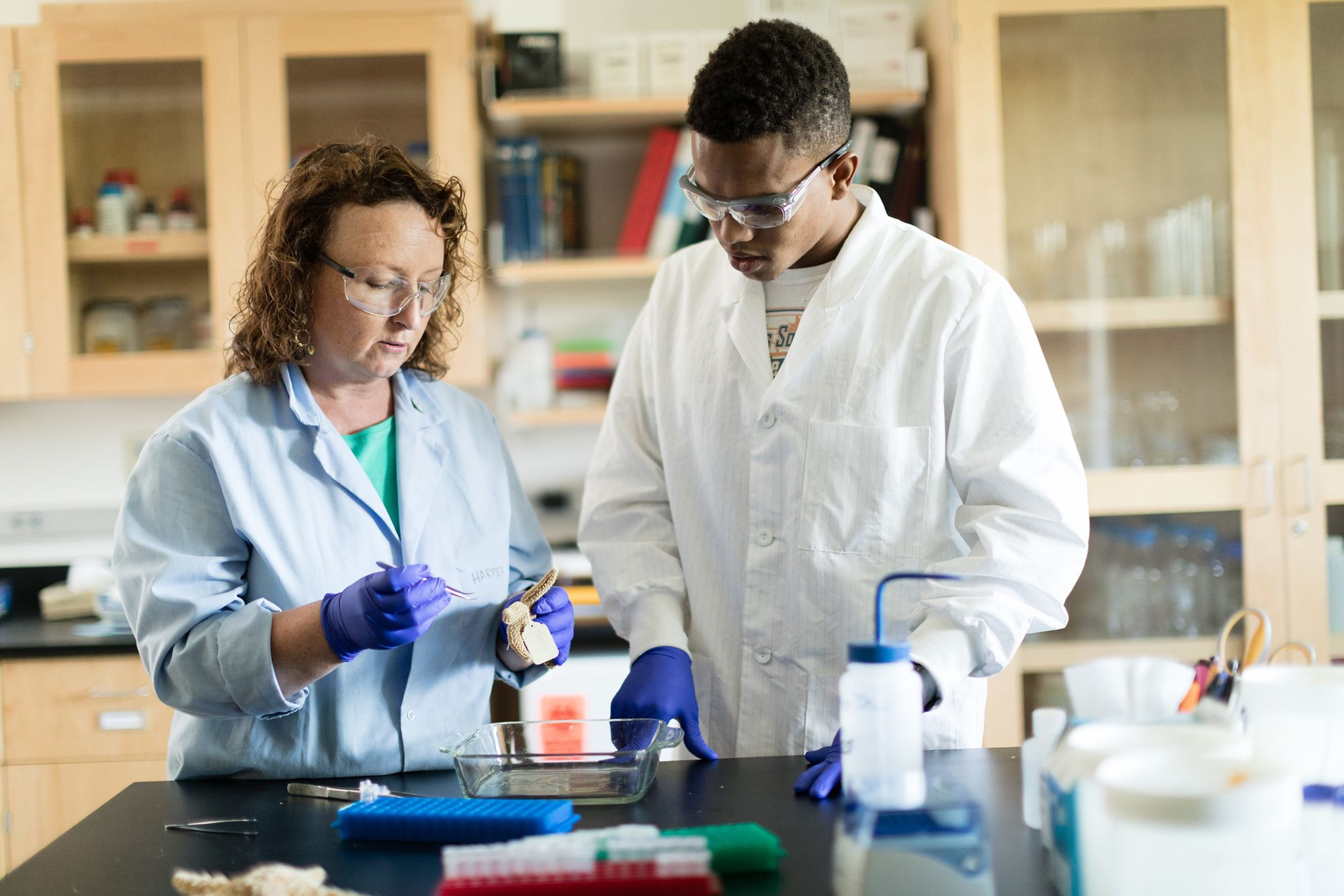 Rollins student conducts research alongside biology professor