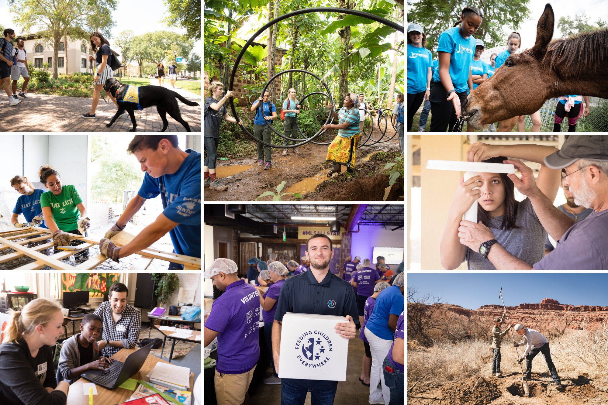 A grid of images depicting service learning experiences at Rollins College.