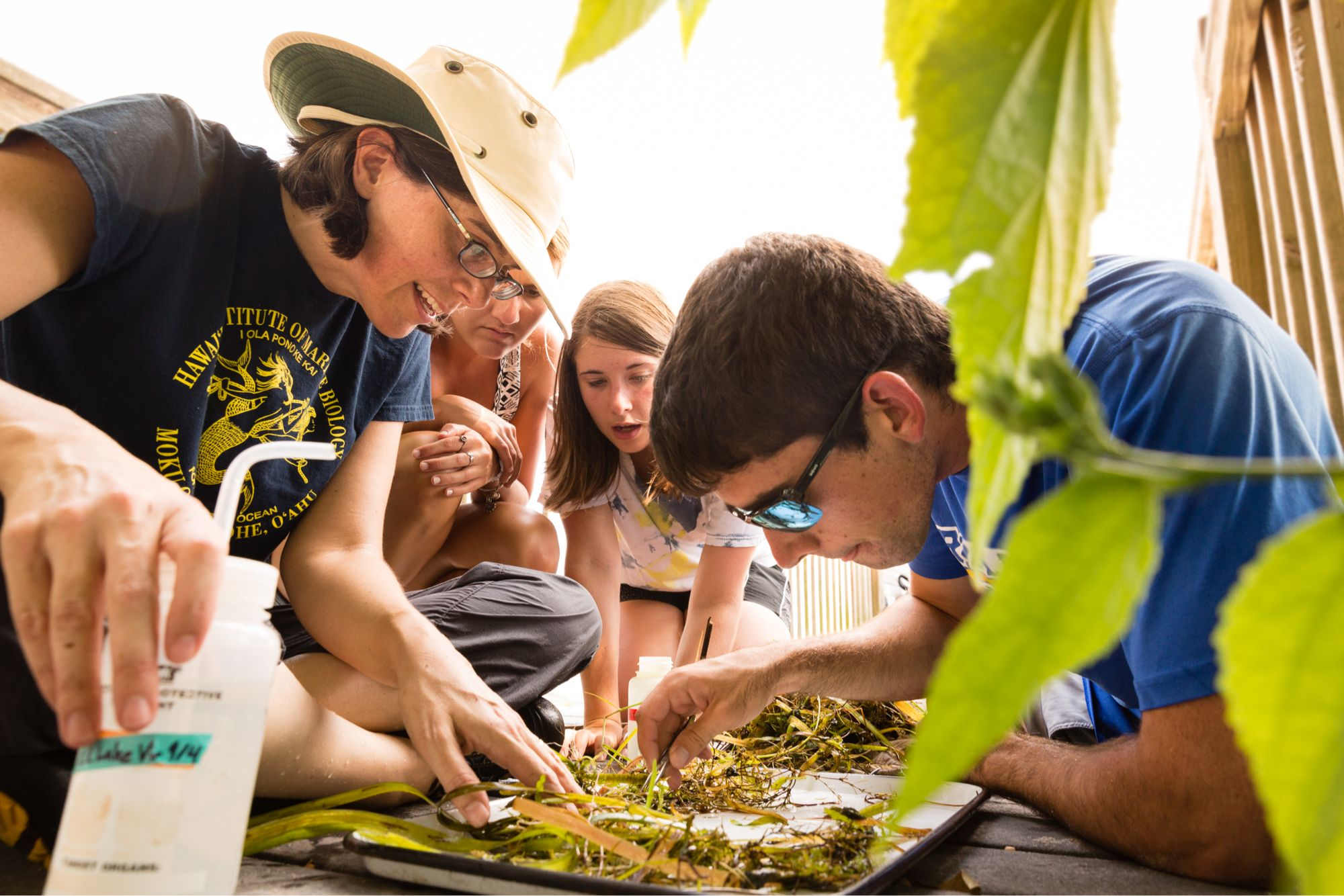 Ecology college students looking at plant materials they collected in Lake Virgina with their professor and mentor.
