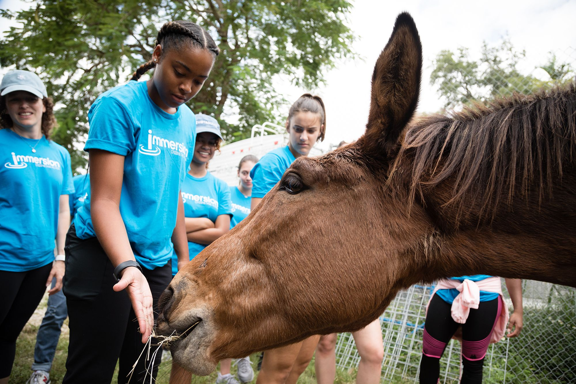 Student pets a horse on an Immersion experience in the Everglades.