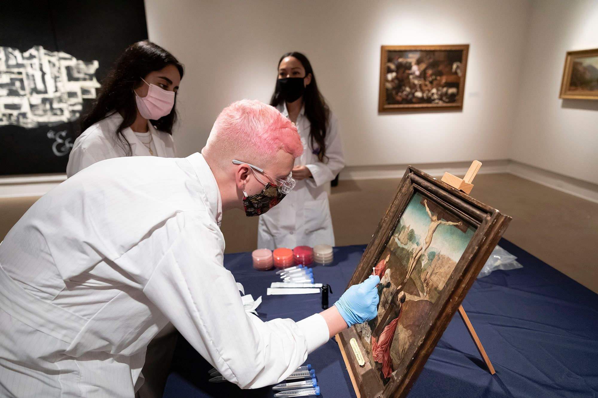 Isaac Gorres '21 joined forces with biology professor Brendaliz Santiago-Navarez to study microbes on a 14th-century painting in the Cornell Fine Arts Museum's collection.