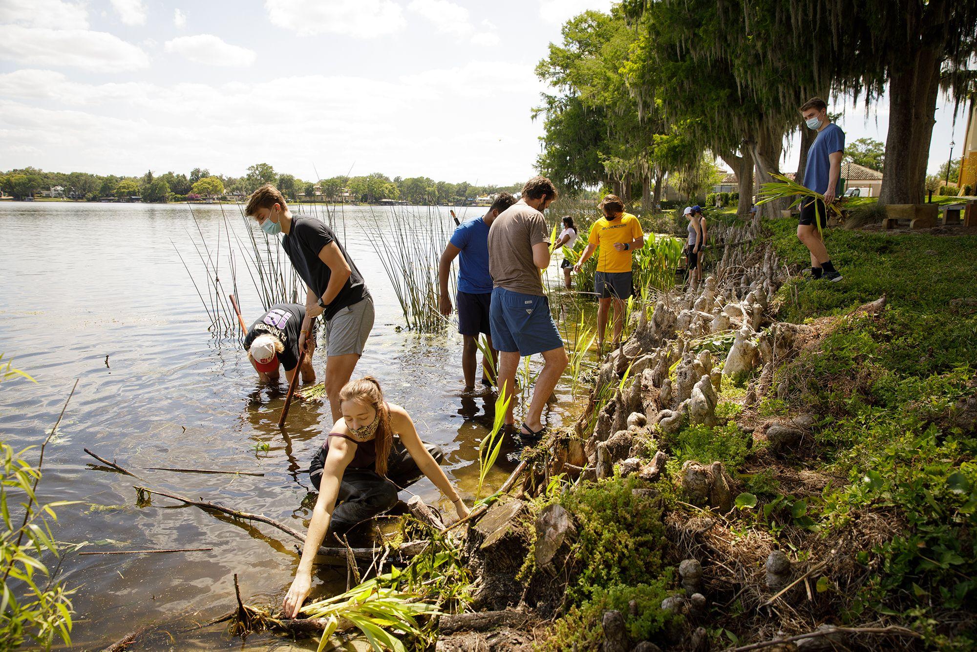 Lake shore restoration project