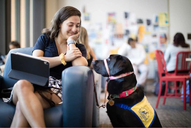 A student and a service dog.
