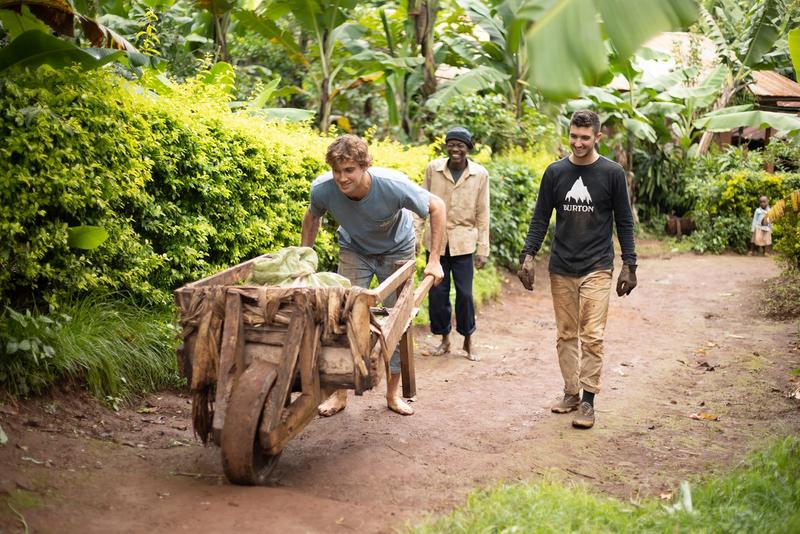 A Rollins student pushing a wheelbarrow.