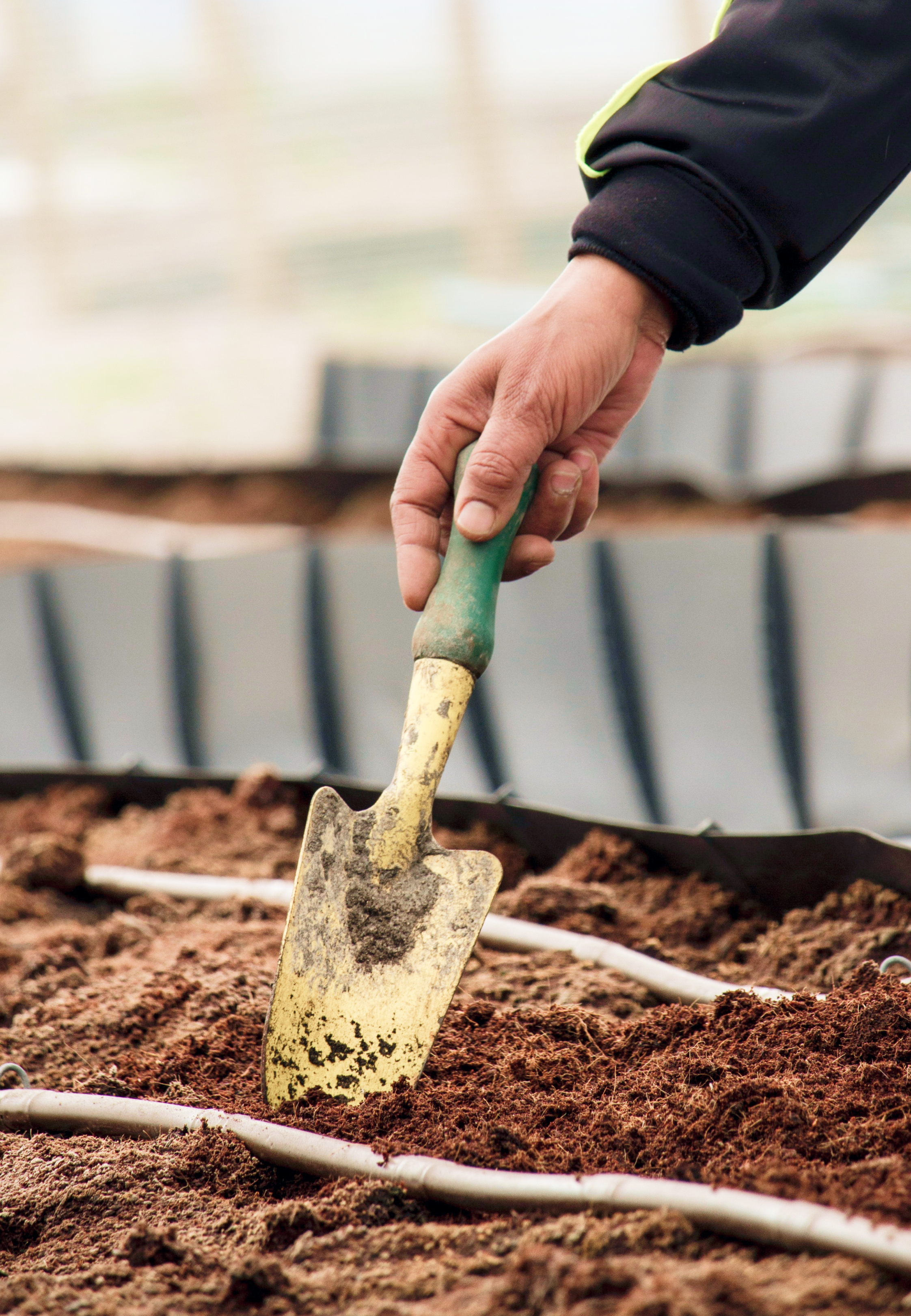 A garden hoe being planted into fresh dirt
