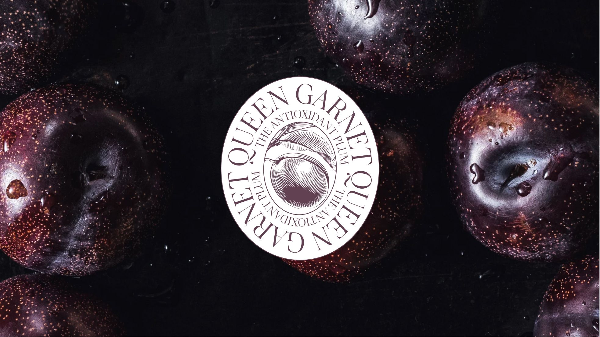 Closeup image of Queen Garnet logo and Queen Garnet plums