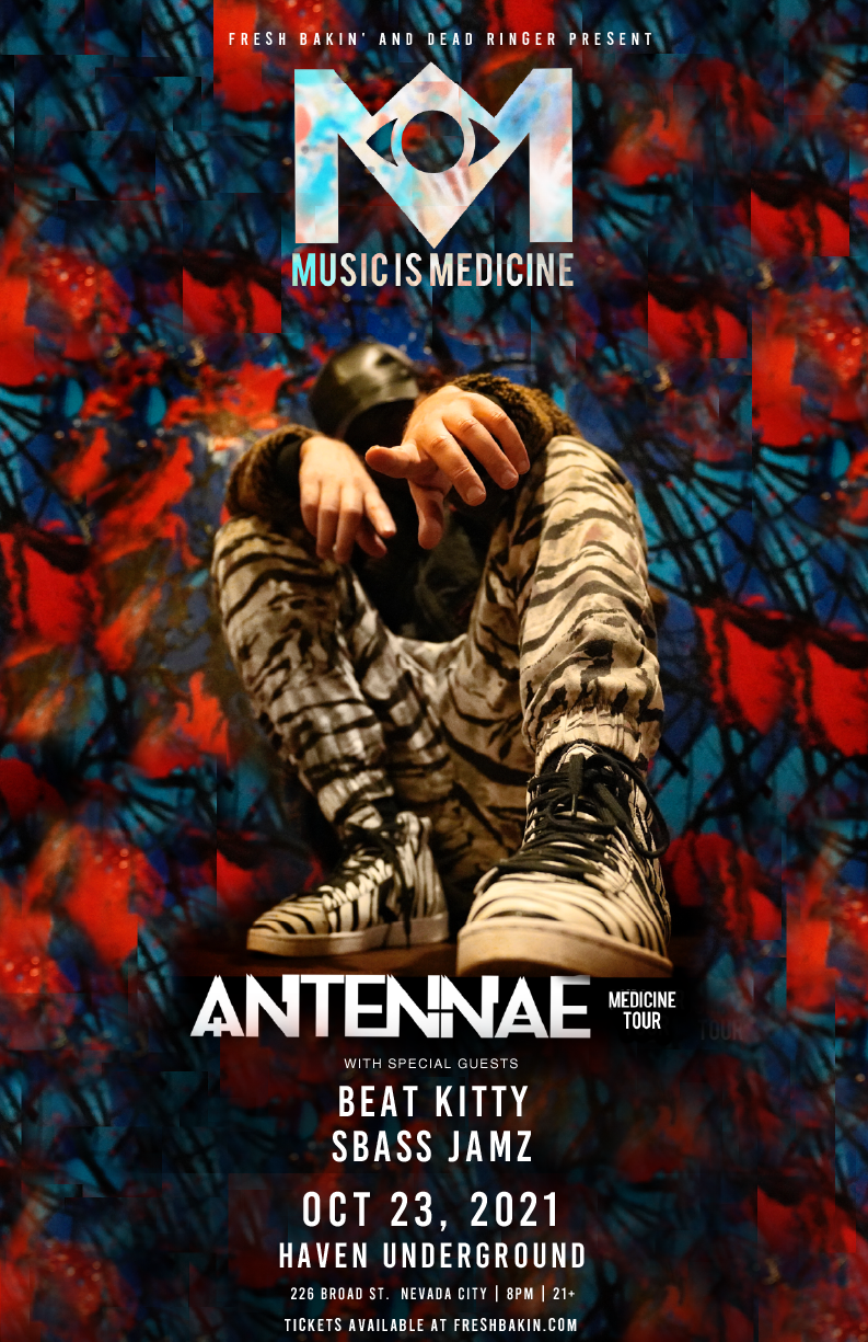 Antennae comes to Nevada City on October 23nd, 2021 to perform at Haven Underground.