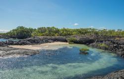 Punta Moreno, Isabela