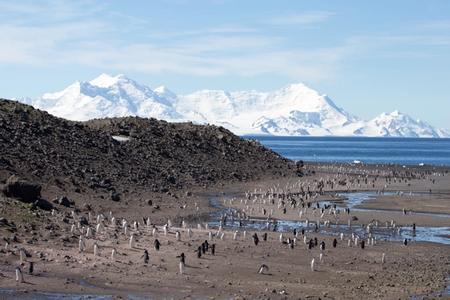 Punta Arenas to Punta Arenas