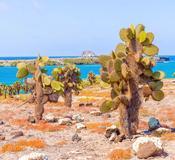 Isla Santa Fé