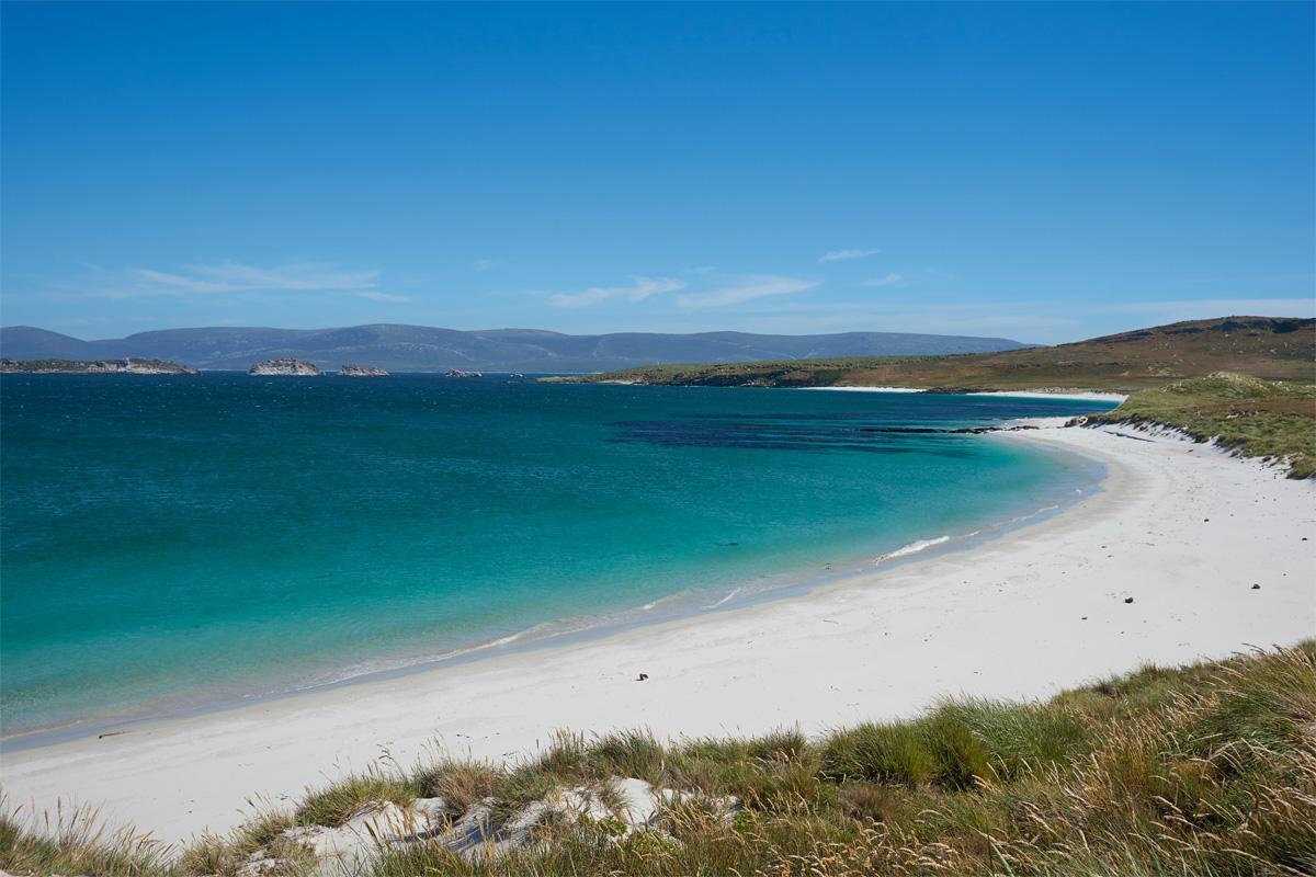 Carcass Islands, Falklands