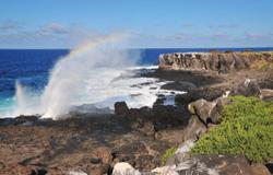 Punta Suarez (Espanola Island)