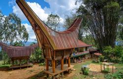 Palopo Sulawesi (Gateway for Tana Toraja)