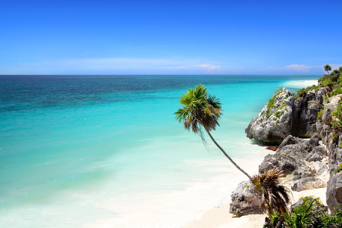Caribbean & Central America