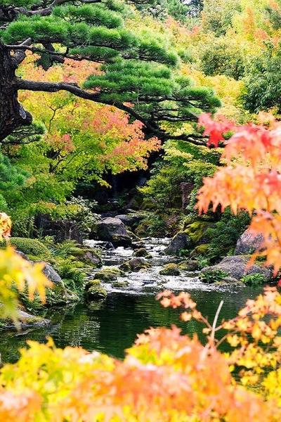 The Philosophy Behind the Most Beautiful Japanese Gardens