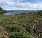 Unga Island