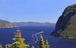 Cruise Saguenay River (Quebec)
