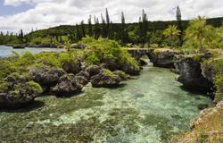 Maré Island