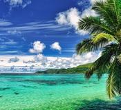 Poivre Island