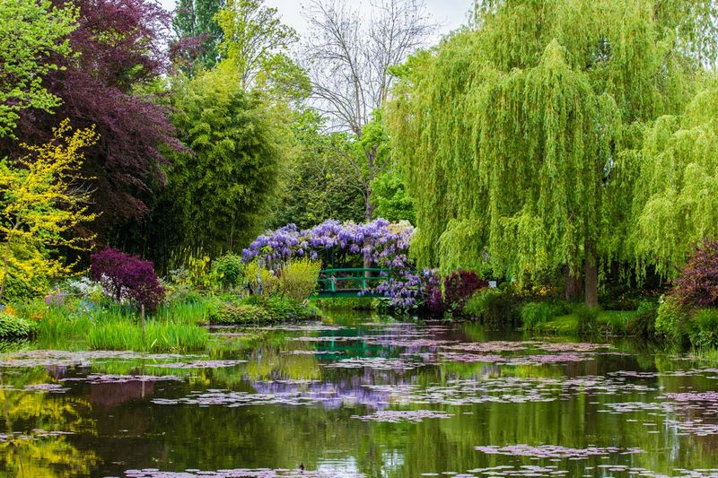 Claude Monet's Garden In Giverny - Rouen For Giverny
