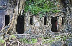 Ross Island, Andaman Islands