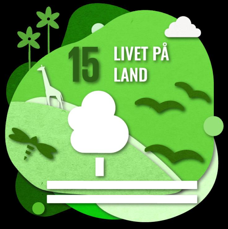 Bærekraftsmål nummer 2: Livet på land