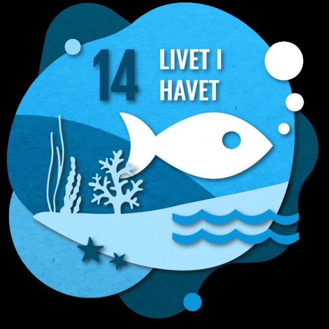 Bærekraftsmål nummer 2: Livet i havet