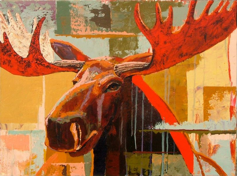 Bull Moose Searching