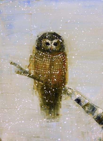 Spotted Owl (Birch Tree)