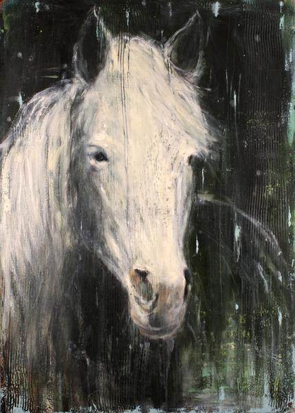 Grass River Horse