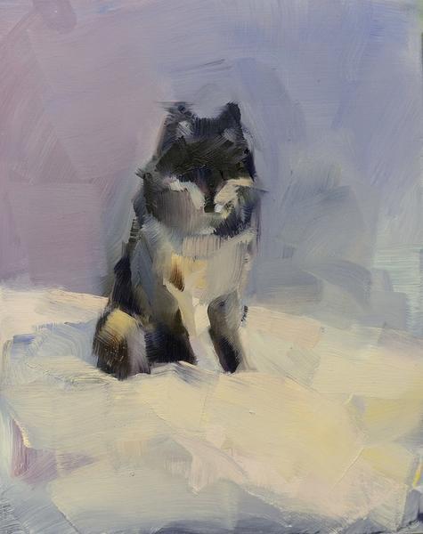Grey Wolf (Evening)