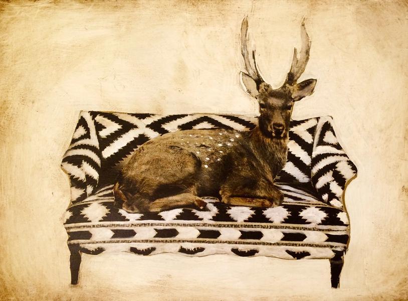 Deer on Sofa