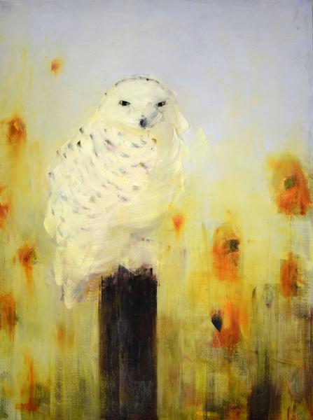 Snow Owl (Orange Poppies)