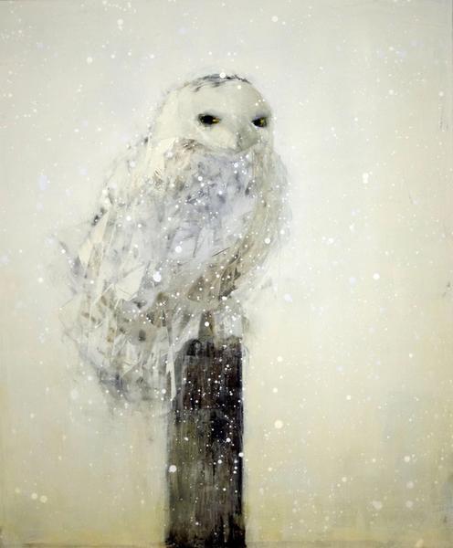 Snowy Owl (Fence Post)