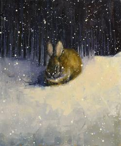 Cottontail (January)