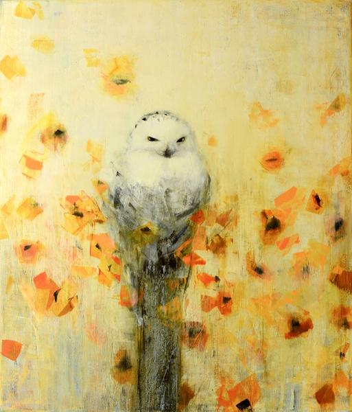 Snowy Owl Daydreaming with Poppies