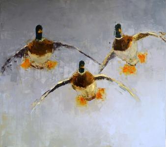 Drakes (Landing)
