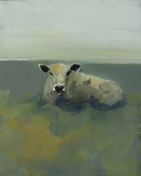 Irish Cow in Repose