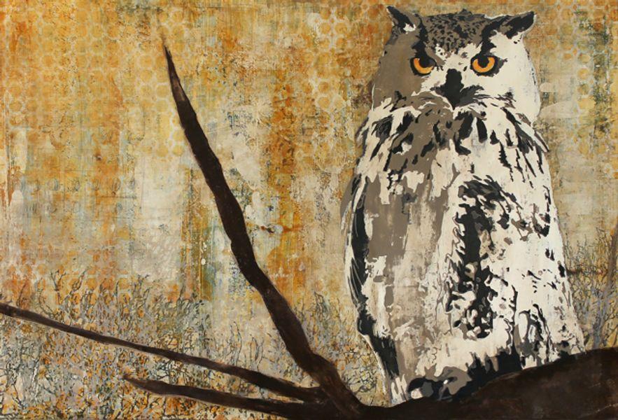Montana Great Horned Owl