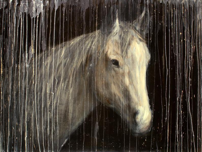 Valley Horse
