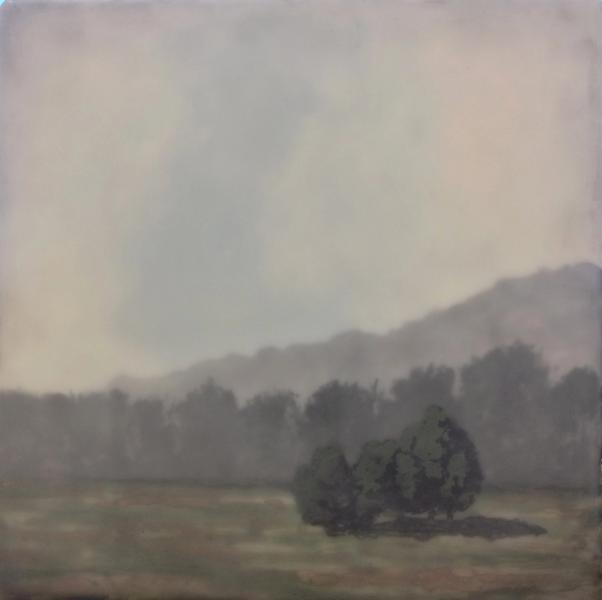 Hill Country Study