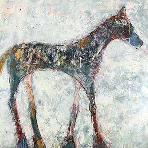 Equus 25