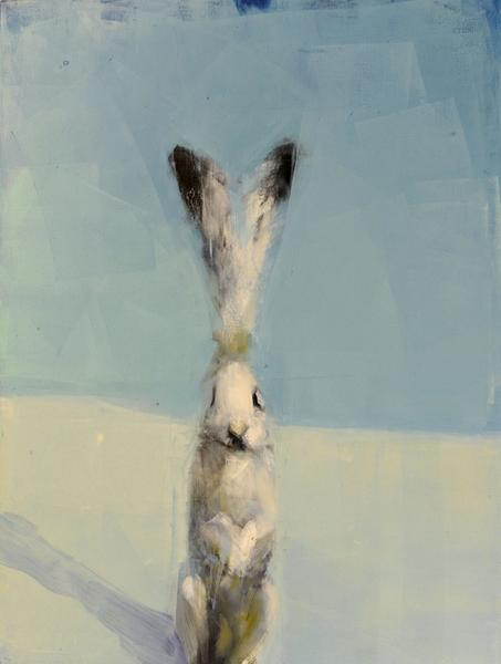Hare with Shadow