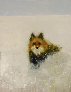 Red Fox (Winter Field)