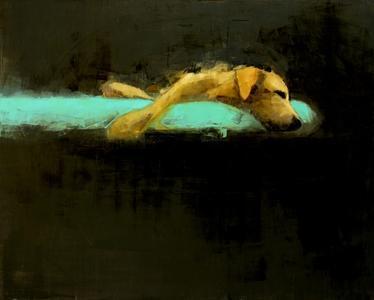 Yellow Dog Dreaming